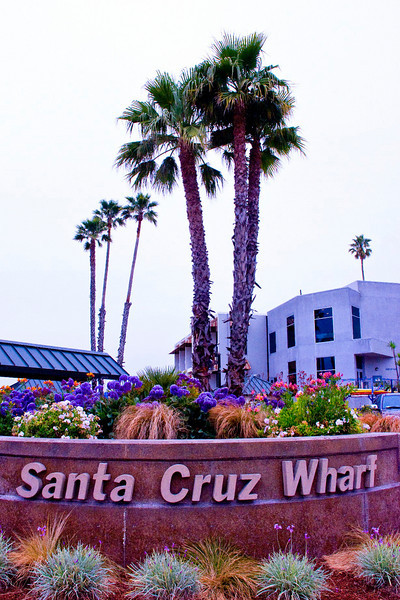 SM  Santa Cruz Wharf WOW_2656 copy.jpg