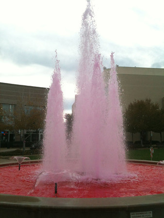 Pink Fountain in Englewood