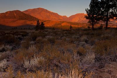 Eastern Sierra, California 2009