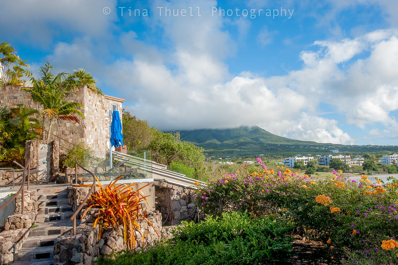 Mt. Nevis from lower gardens