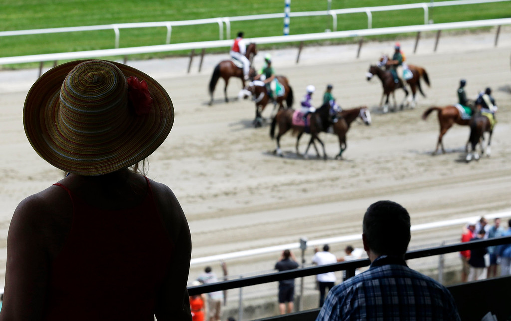 . A race fan wearing a hat watches as the horses are led on the track for the post parade at Belmont Park in Elmont, N.Y., Saturday, June 9, 2012. The Belmont Stakes will be run at the track later in the day. (AP Photo/Julio Cortez)
