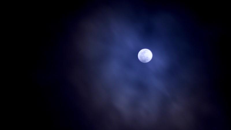 Luna 2019