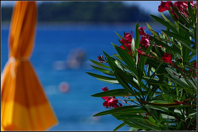 2019-08-Fazana-beach-066.jpg