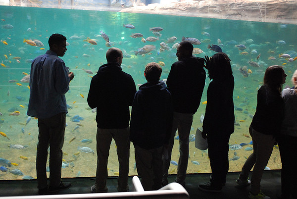Adventure Aquarium Marine Biology Trip