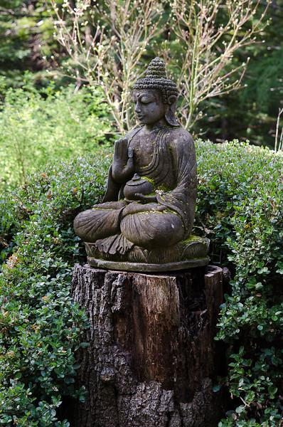 20130407-Vajrapani-Spring-13-0902.jpg