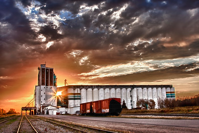Viterra Grain Terminal