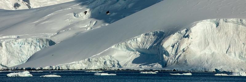 2019_01_Antarktis_04762.jpg