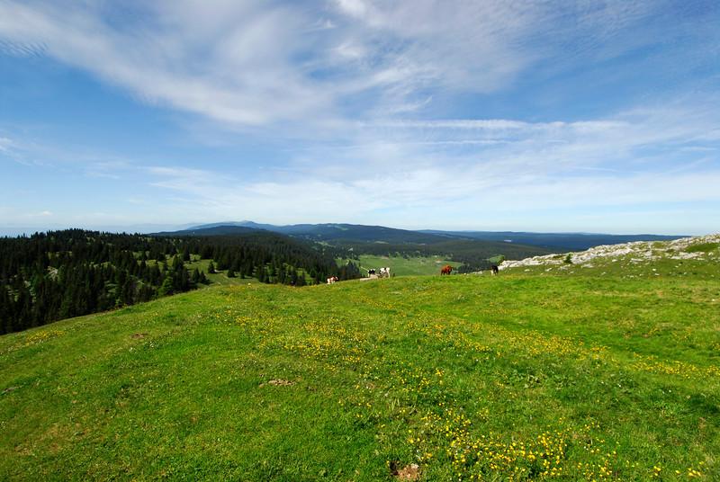 070626 7254 Switzerland - Geneva - Downtown Hiking Nyon David _E _L ~E ~L.JPG