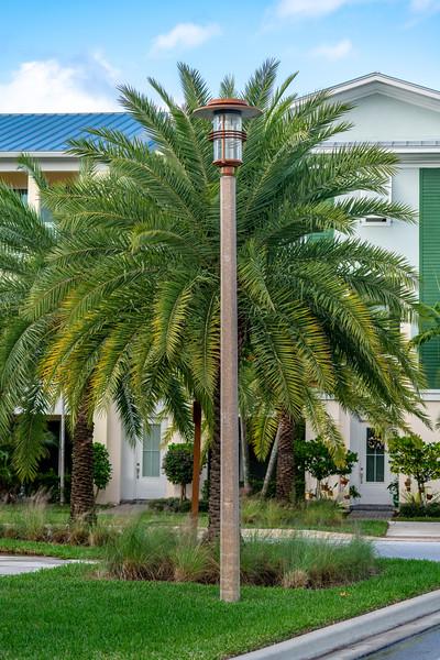 Spring City - Florida - 2019-170.jpg