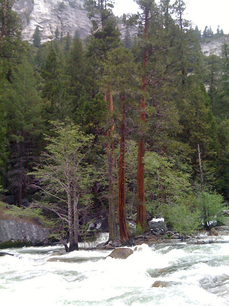 Above Vernal Fall. Mist Trail, Yosemite NP