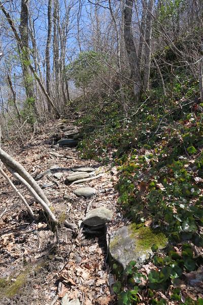 High Bethel Trail - 4,400'