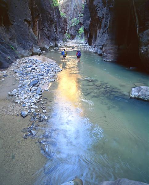 Zion - virgin-river-narrows_zion - KCOT.jpg