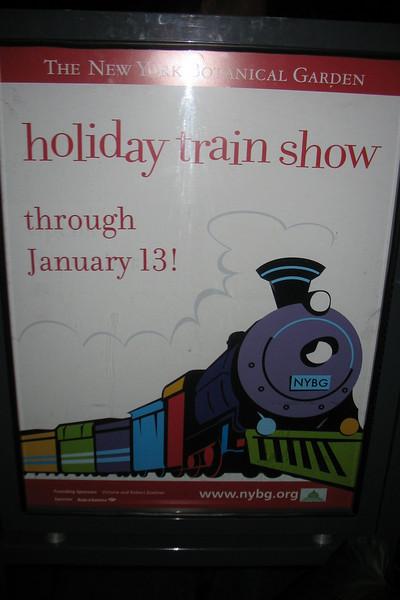 NY Botanical Garden Train Show 12/28/07