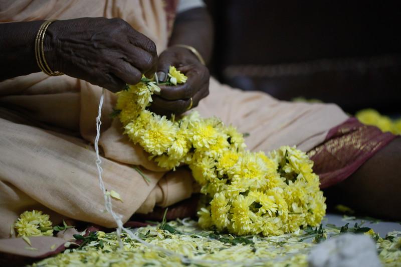 India2014-4074.jpg