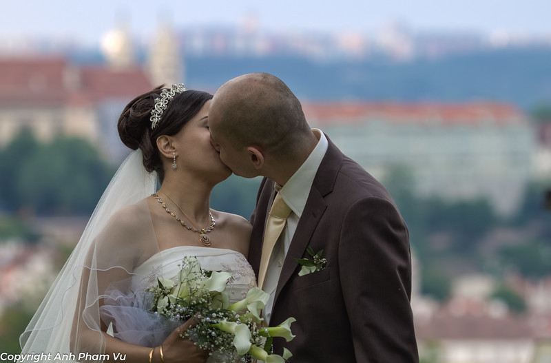 Ammar's Wedding May 2011 034.jpg