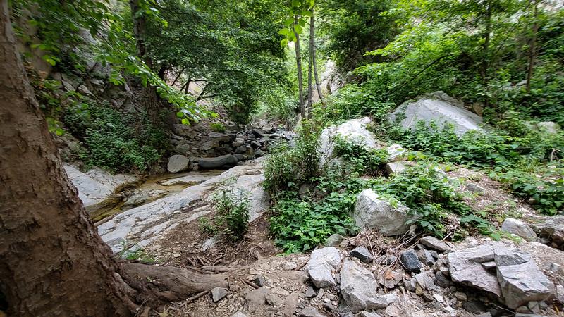 20190621066-Switzer Falls, Bear Canyon.jpg