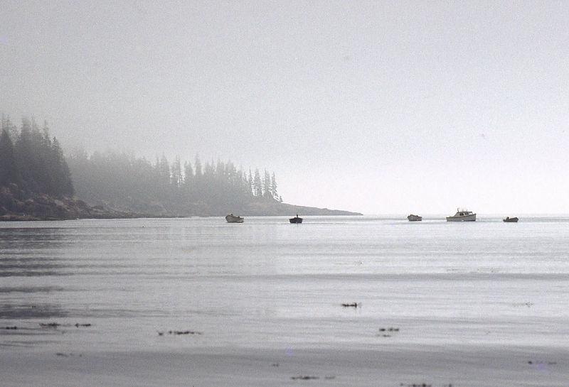 boats fundy.jpg