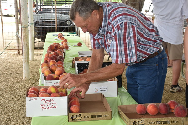 Peach JAMboree afternoon-rodeo 6-27-19
