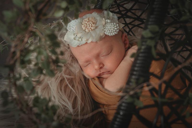 Hayden Leibel Newborn April 2021