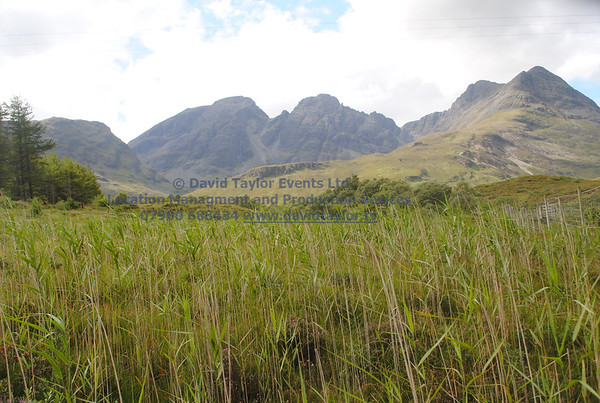 Long grass/reads and Montains Broadford Elgol road