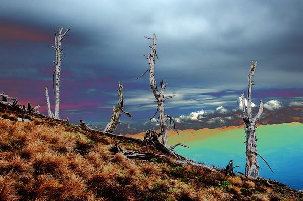 Mt. Abercrombie