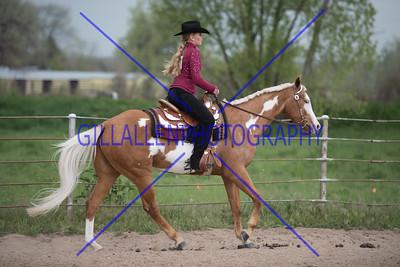 CSHA Western 160515