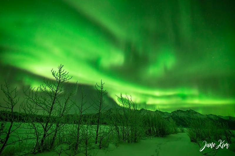Nov20_Knik River Aurora__6105192-Edit-Juno Kim.jpg