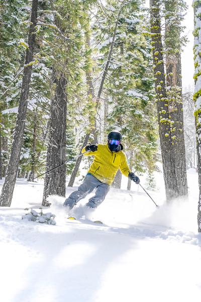 Powder Skier