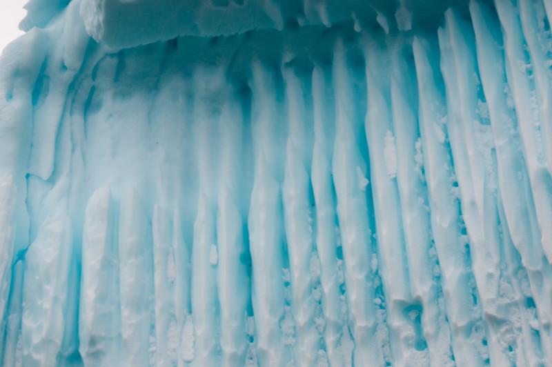Antarctica 2015 (38 of 99).jpg