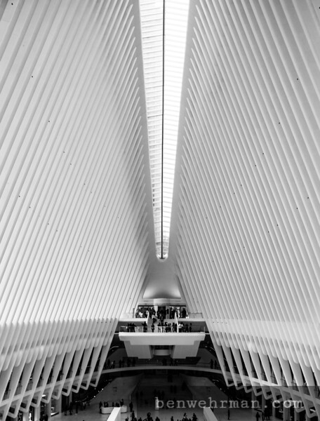 the oracle at ground zero