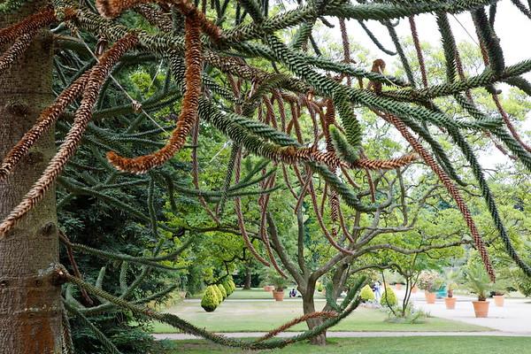 Jardins d'Orleans