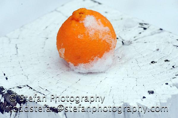 11-25-2010 Kirkland Snow