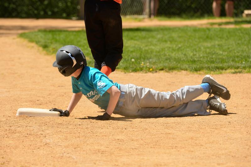 Baseball ----- ( 2013 )