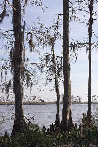 Tchefuncta River