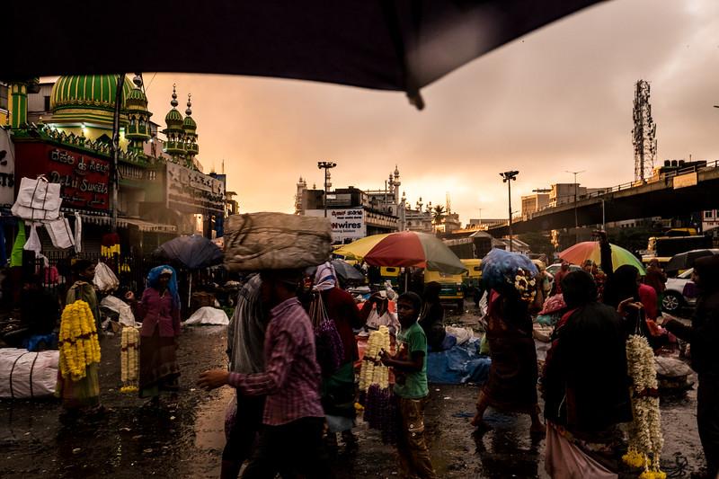 2019-09 Bangalore-50.jpg