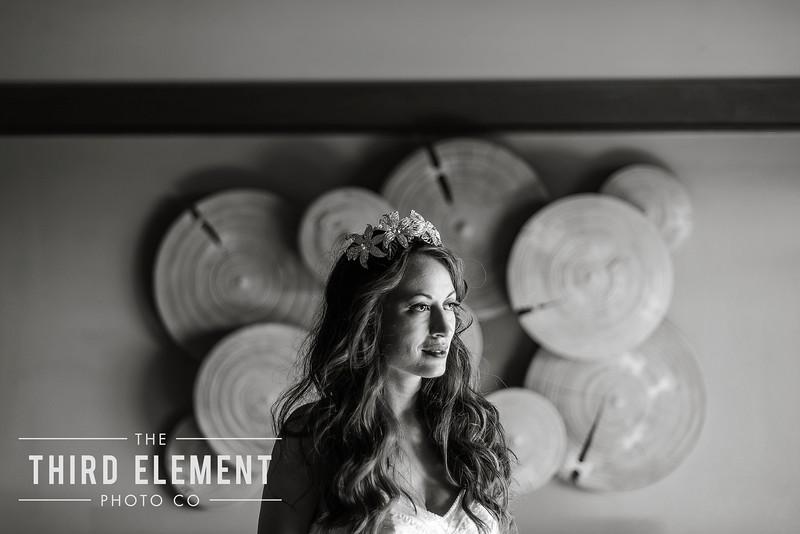 Third Element Photo Co Lina + Rett Carmel Bay Area Wedding Photographer_0013.jpg