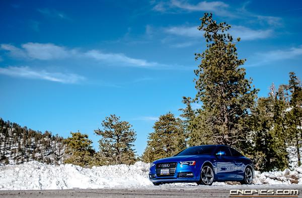 Sepang Blue Audi S5