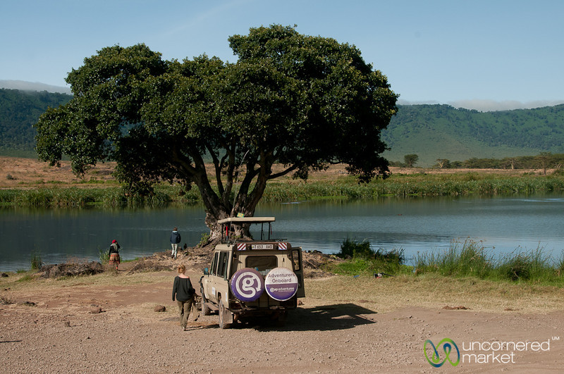Safari Break at Hippo Pool - Ngorongoro Crater, Tanzania