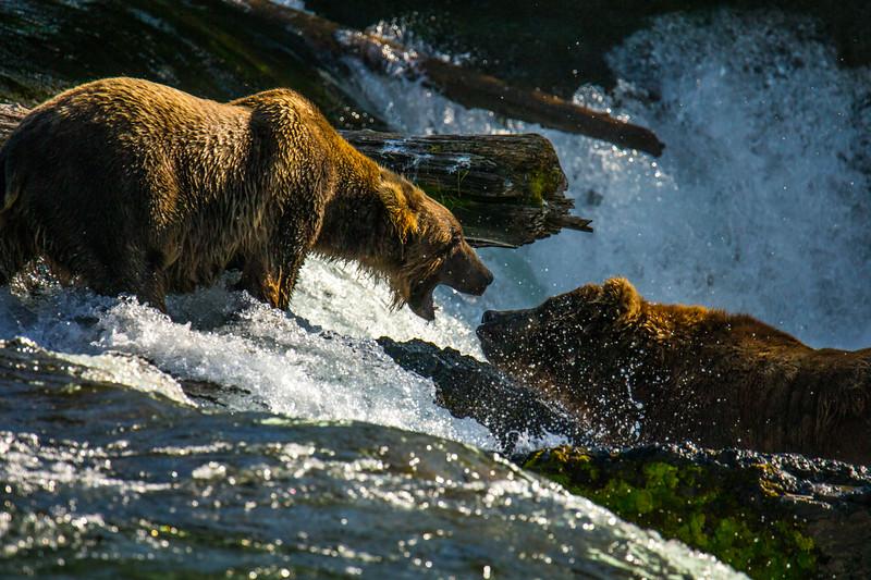 The Fishing Quarrel.jpg