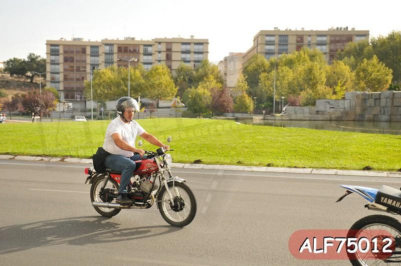 ALF75012.jpg