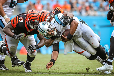 2018 Panthers vs Bengals