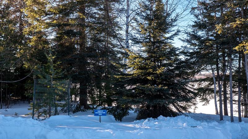 Sleeping-Giant-Provincial-Park-Cabin-22.jpg