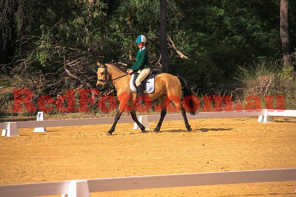2014 06 29 Darlington Pony Club Dressage Upper Darlington Arena