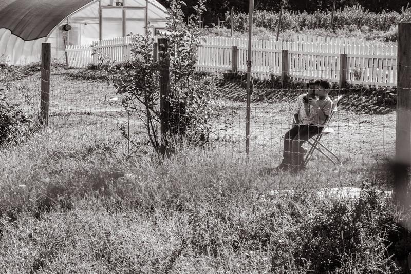 Terhune_Orchards-112.jpg