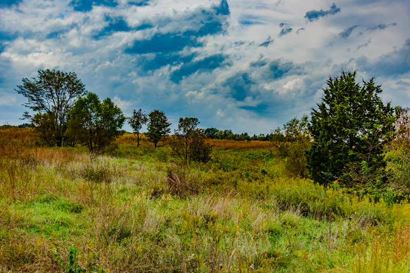 Prairie  66
