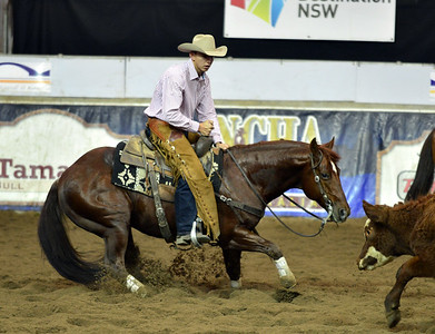 Whos top cat with philip smith youth ncha 2013 futurity