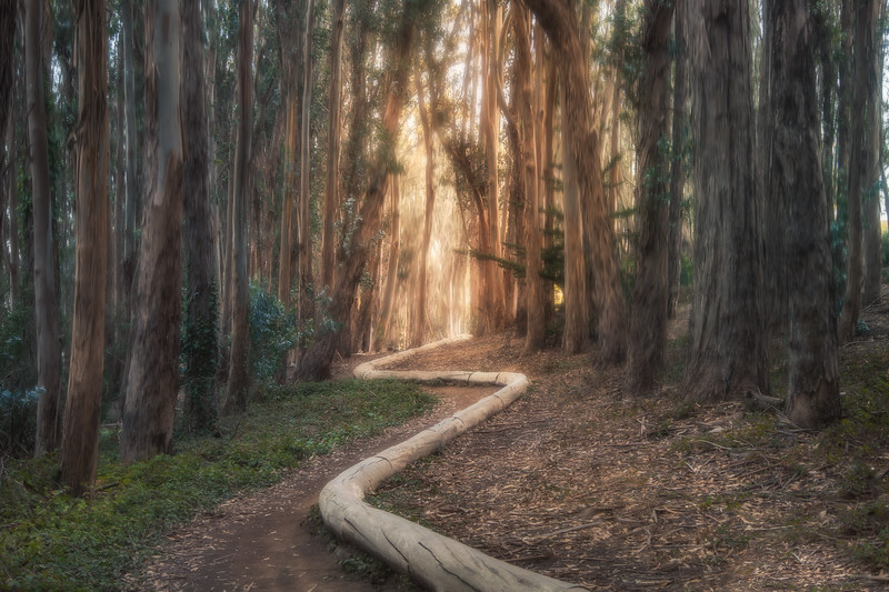 The generosity of solitude