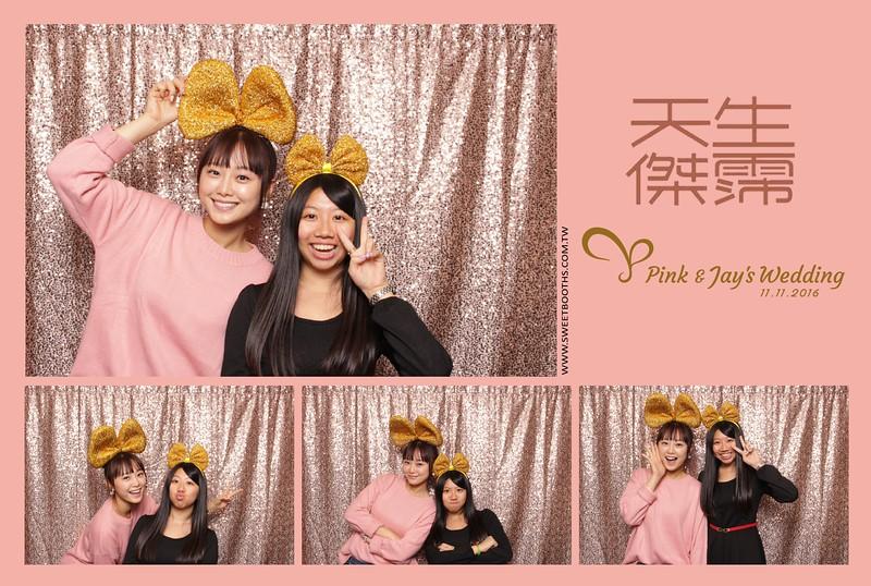 Pink.Jay (131).jpg