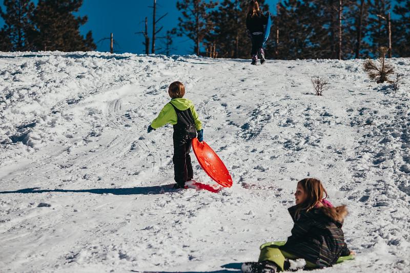 snowMLK-2690.jpg