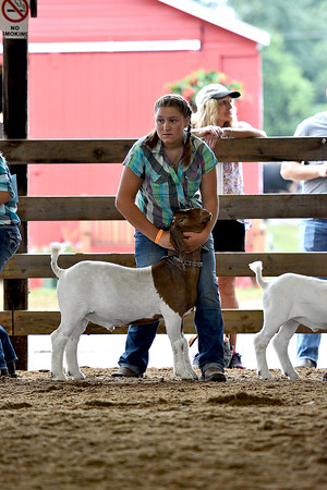 Youth & Open Goat Show 8-15-2016